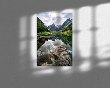 Uitzicht vanaf de Seealpsee op de ruige Appenzeller Alpen van Leo Schindzielorz