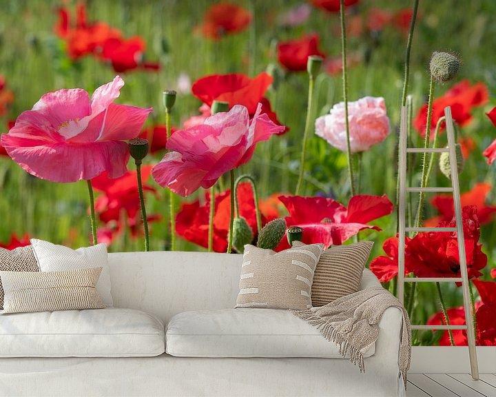 Impression: Un champ de coquelicots roses et rouges aux couleurs vives sur JM de Jong-Jansen