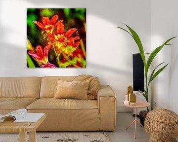 Digital Art Medium Blumen von Hendrik-Jan Kornelis