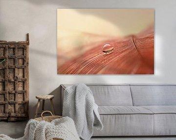 Veerkracht  (Oud-roze veer met druppel)
