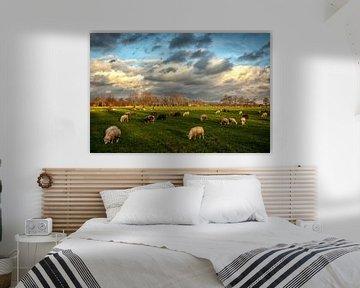 Hollands Landschap. Wolkenlucht en schapen. van Arthur Schotman
