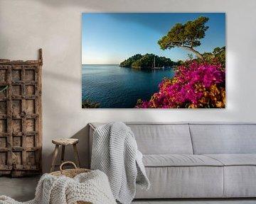 Bloemrijke kust in Portofino aan de Ligurische kust van Leo Schindzielorz