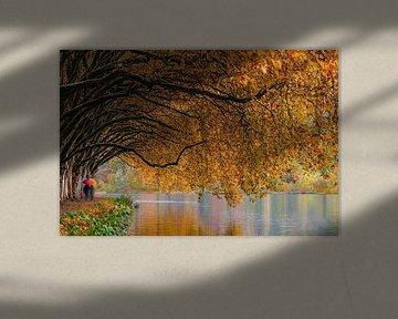 Herfst aan de rivier van Sabine Böke-Bergau