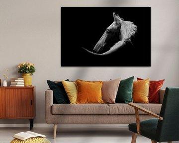 Weißes Pferd in Fine-Art-Ausführung von Femke Ketelaar