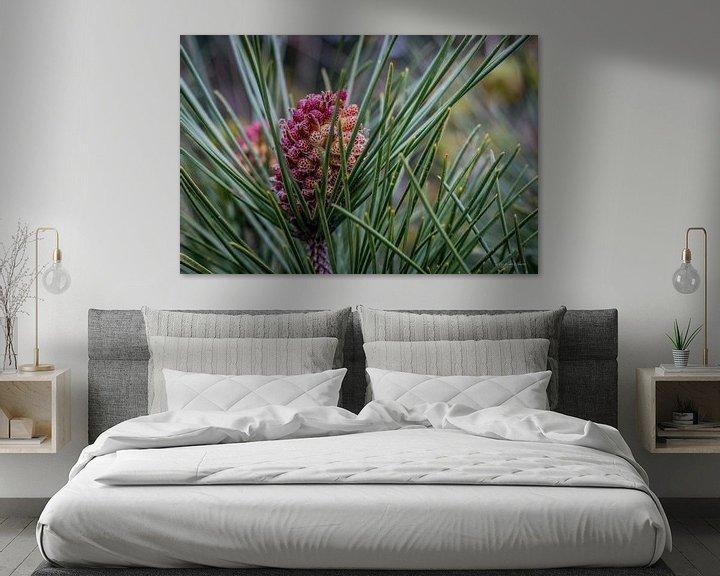 Sfeerimpressie: dennenappel in bloei 2 van Andre Klooster
