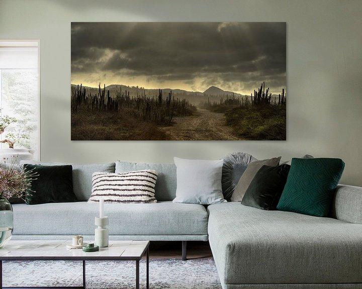 Sfeerimpressie: Cactus Field Bonaire van M DH
