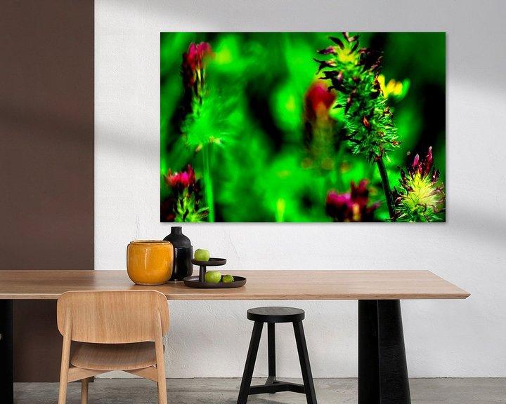 Sfeerimpressie: Flora : Geniet van de natuur van Michael Nägele