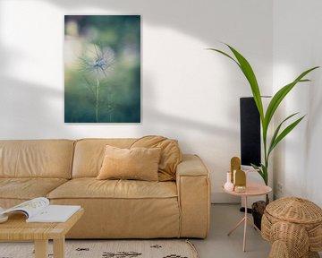 Blumen Teil 153 von Tania Perneel
