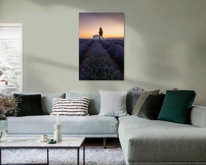 Sfeerimpressie: Veld met lavendel in Frankrijk met schuurtje voor de zonsopgang. van Voss Fine Art Fotografie