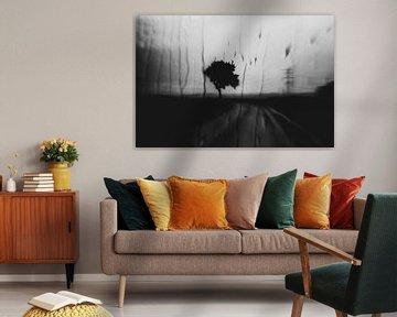 Road von David Pichler