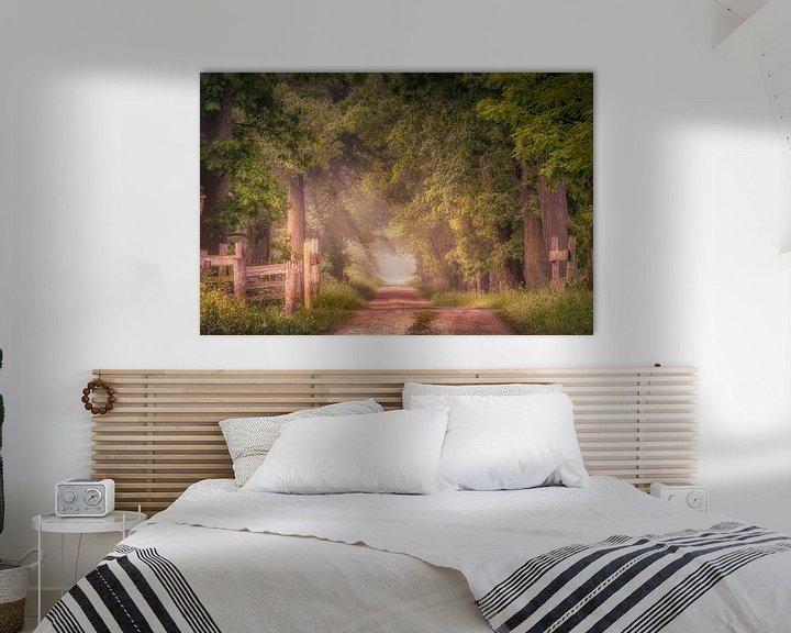 Sfeerimpressie: Sfeervol pad met eikenbomen aan het Smeetshof van Peschen Photography