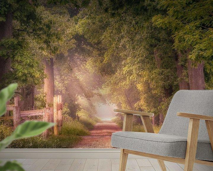 Sfeerimpressie behang: Sfeervol pad met eikenbomen aan het Smeetshof van Peschen Photography