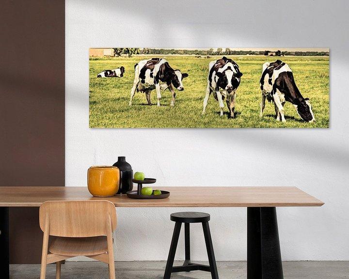 Sfeerimpressie: Zwartbont Koeien in de Weiland Oud van Hendrik-Jan Kornelis