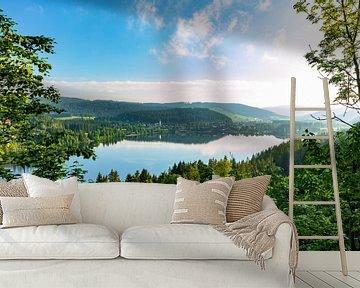Het meer in het ochtendlicht van Jürgen Wiesler