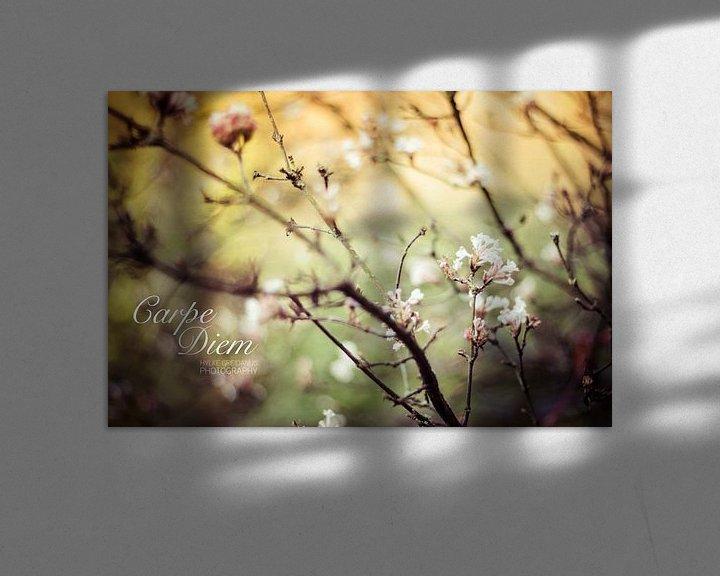 Sfeerimpressie: Carpe Diem Flowers van Hylke Greidanus