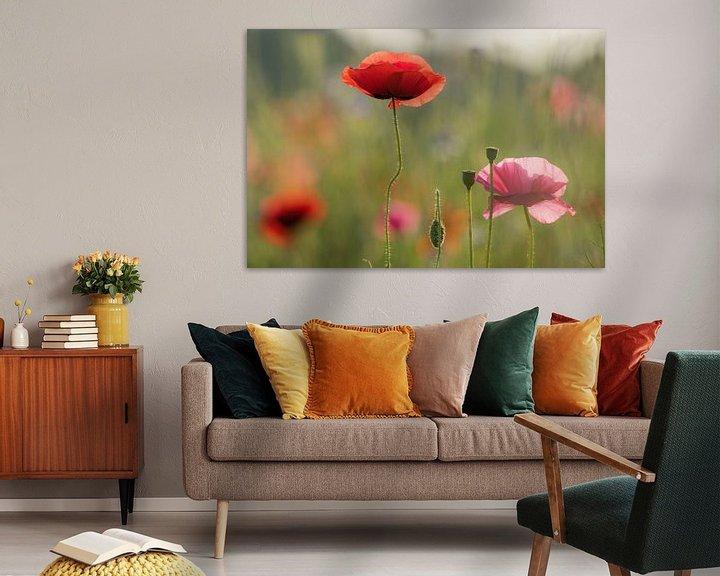 Sfeerimpressie: Klaproos veldbloemen van Jeannette Braamskamp
