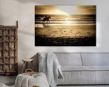 Reiten bei Sonnenuntergang am Strand am Meer | Niederlande | Natur- und Landschaftsfotografie von Diana van Neck Photography