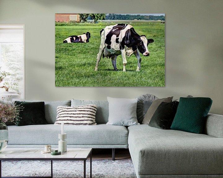 Sfeerimpressie: Zwartbont Koeien in de Weiland van Hendrik-Jan Kornelis