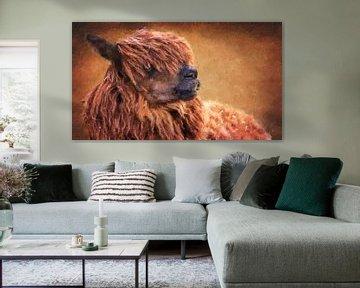 Braunes Alpaka mit Blick nach rechts (Panorama, Gemälde)