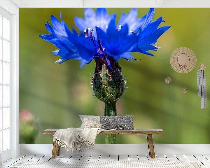 Sfeerimpressie behang: Korenbloem van Ingrid Aanen