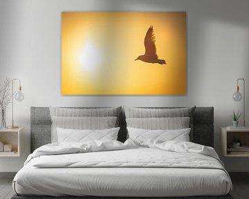Vliegende meeuw bij zonsondergang