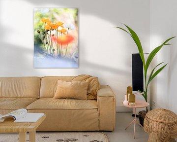 Ein paar Mohnblumen von Bob Daalder