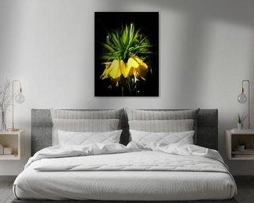 Flower Art JM100 von Johannes Murat