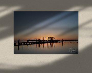 De vroege ochtend zon van Tina Linssen