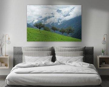 Fruitbomen op helling in Aosta dal met laaghangende bewolking op de achtergrond. von Gert van Santen