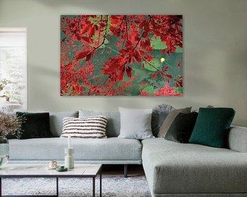 Blumenwasser von Maurits Eykman