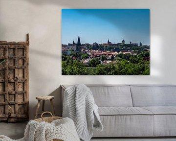Panoramisch uitzicht over de stad Bernburg van Animaflora PicsStock