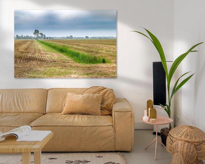 Beispiel: Niederländische Landschaft von Mark Bolijn