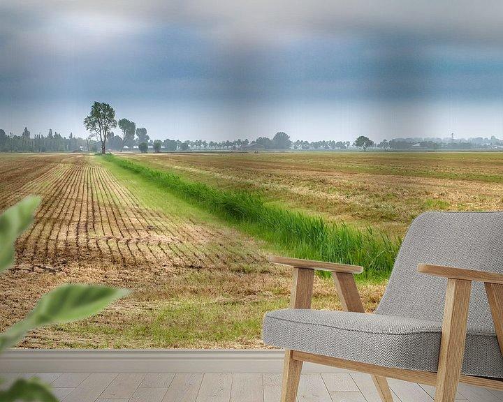 Beispiel fototapete: Niederländische Landschaft von Mark Bolijn