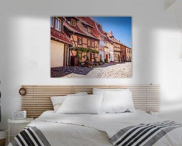 Vakwerkhuizen in de oude binnenstad van Quedlinburg van Animaflora PicsStock