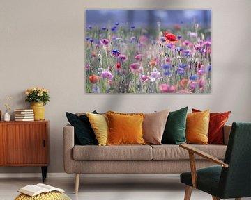 Blumenfeld mit Mohn und Kornblume von Karla Leeftink