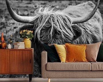Isle of Skye   Highland rund   Schotland landschap fotografie   Fine art   Art print Art Print van Sander Spreeuwenberg