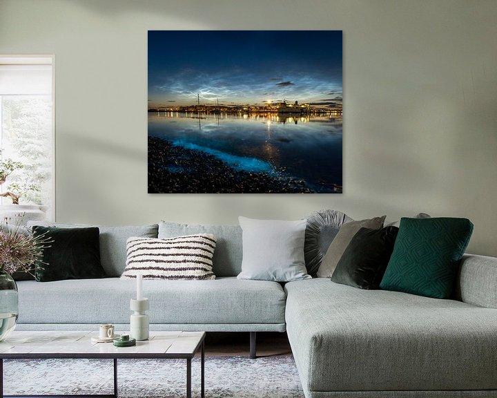 Sfeerimpressie: Zeevonk met lichtende nachtwolken van Marjolein van Roosmalen