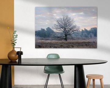 Gefrorener Baum von Johan Vanbockryck