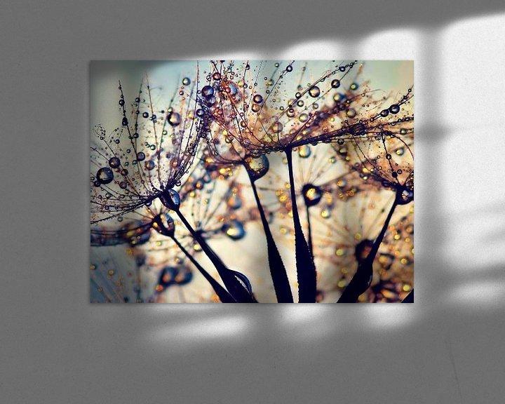 Impression: Pissenlit Spectre de couleurs sur Julia Delgado