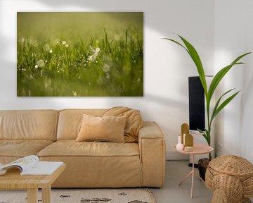 Tau auf dem Gras von Annemarie Goudswaard