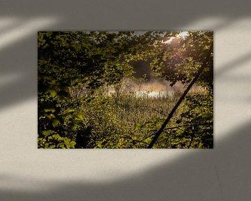 Morning Mist van W.Schriebl PixelArts