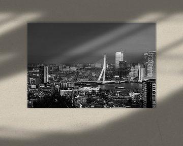 Skyline Rotterdam mit Erasmusbrücke von Marit Lindberg