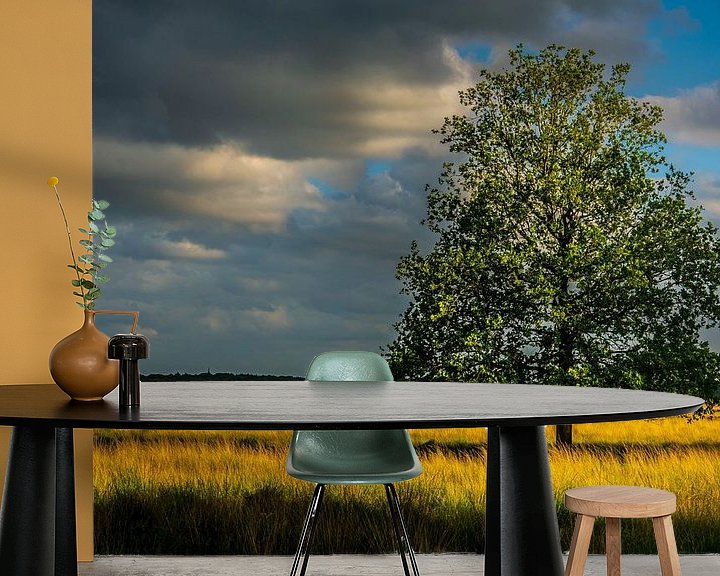 Sfeerimpressie behang: Drenthe Doldersumveld van Jan Peter Nagel