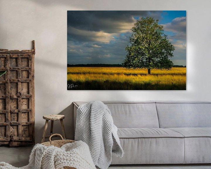 Sfeerimpressie: Drenthe Doldersumveld van Jan Peter Nagel