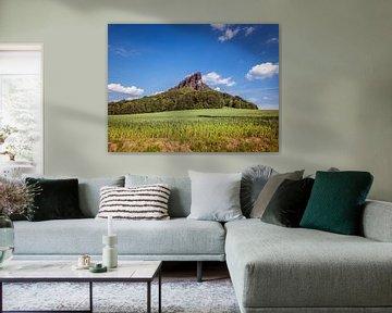 Vue du Lilienstein dans les montagnes de grès de l'Elbe en Saxe sur Animaflora PicsStock