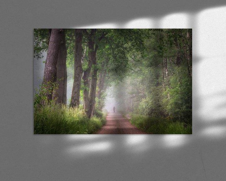 Beispiel: Am Rande des Laura-Waldes auf einer nebligen Waldstraße von Peschen Photography