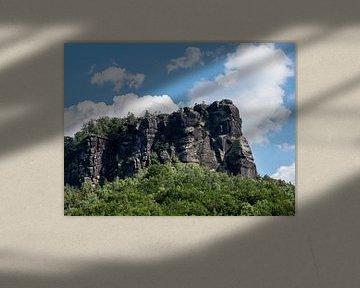Gezicht op de klimrots Lilienstein in het Elbezandsteengebergte in Saksen van Animaflora PicsStock