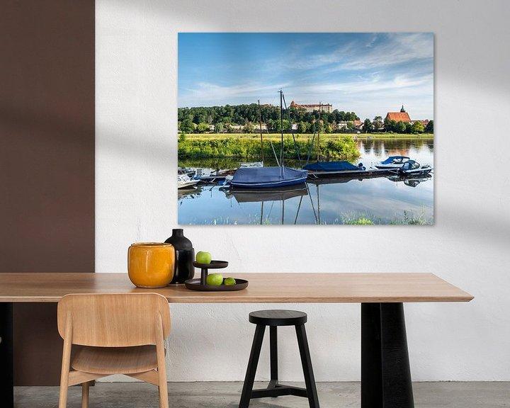 Impression: Vue des rives de l'Elbe à Pirna en Saxe sur Animaflora PicsStock