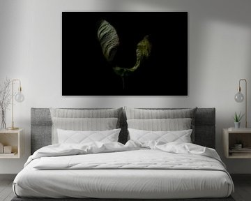 Flügel oder Saatgut? von Lynlabiephotography