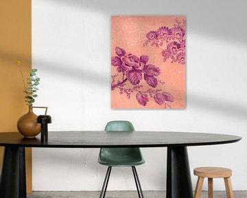 Draw me a Rose on the Wall   Botanische print - Bloemen illustratie op muur -  Fuchsia en Roze van Marlou Westerhof